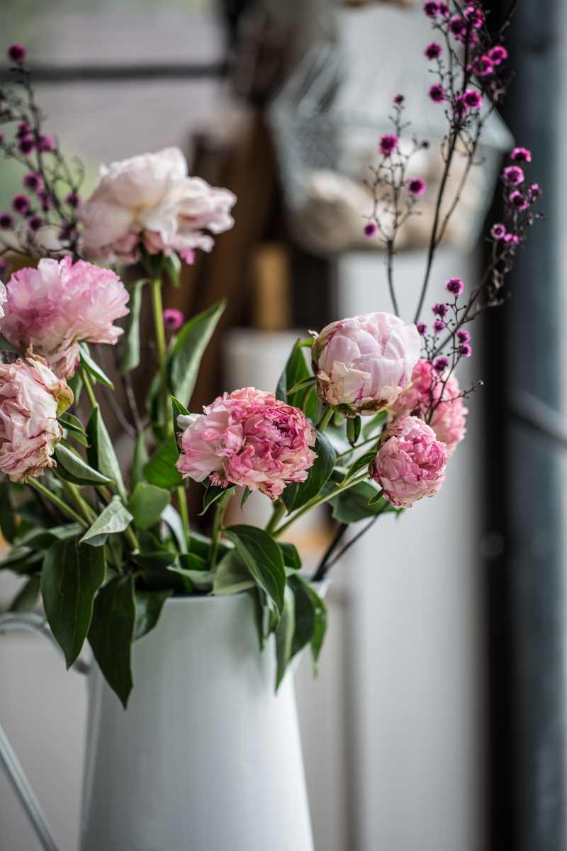 Peonies And Stirlingia Florals - Cook Republic