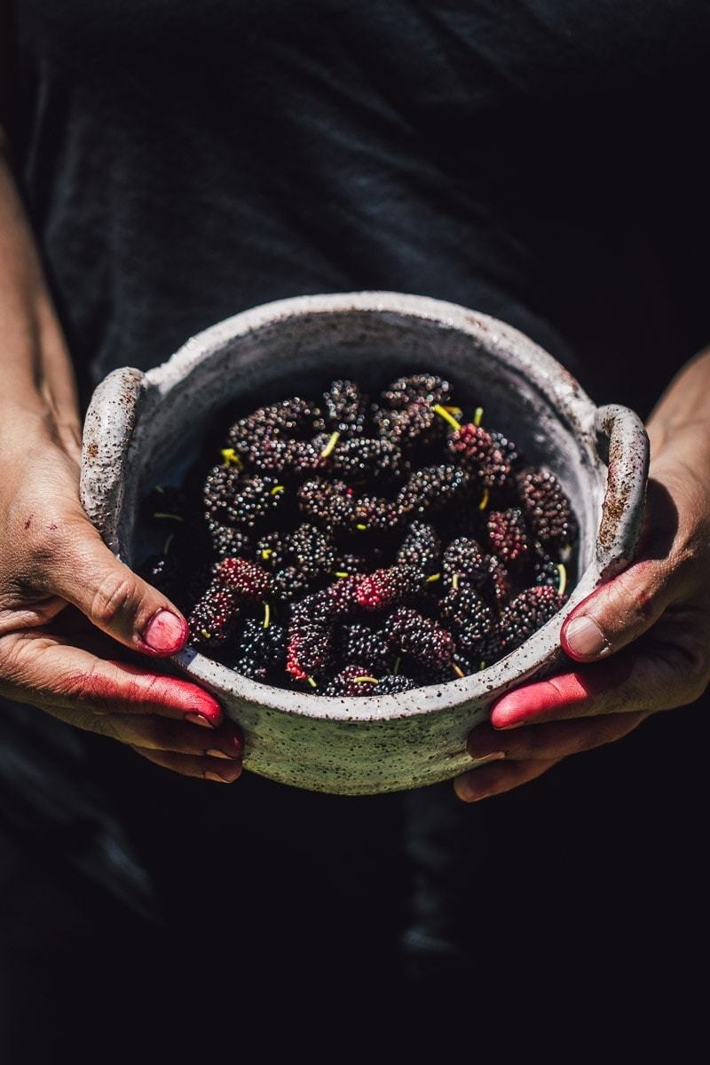 Fresh Mulberries - Cook Republic